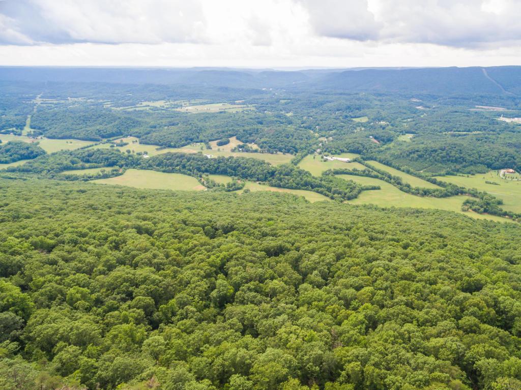 83 Brow Wood Ln 20, Lookout Mountain, GA 30750