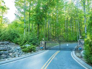 0 Lookout Crest Ln 9 & 10, Lookout Mountain, GA 30750