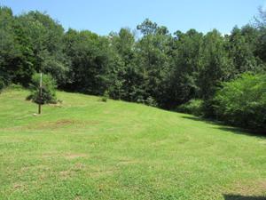 1770 Mountain View Rd, Trion, GA 30753