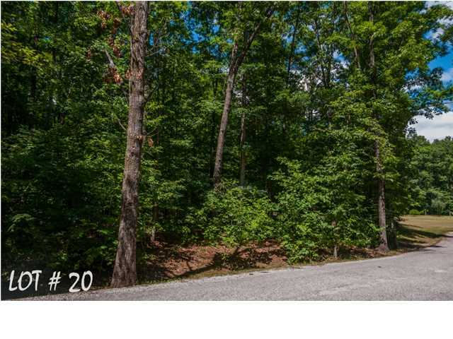 20 Shadow Rock Dr, Monteagle, TN 37356