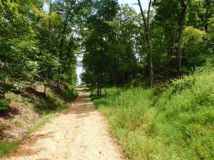 Lot 197 Maple Court, Spring City, TN 37381