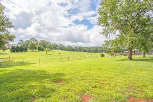 11814 Birchwood Pike, Harrison, TN 37341