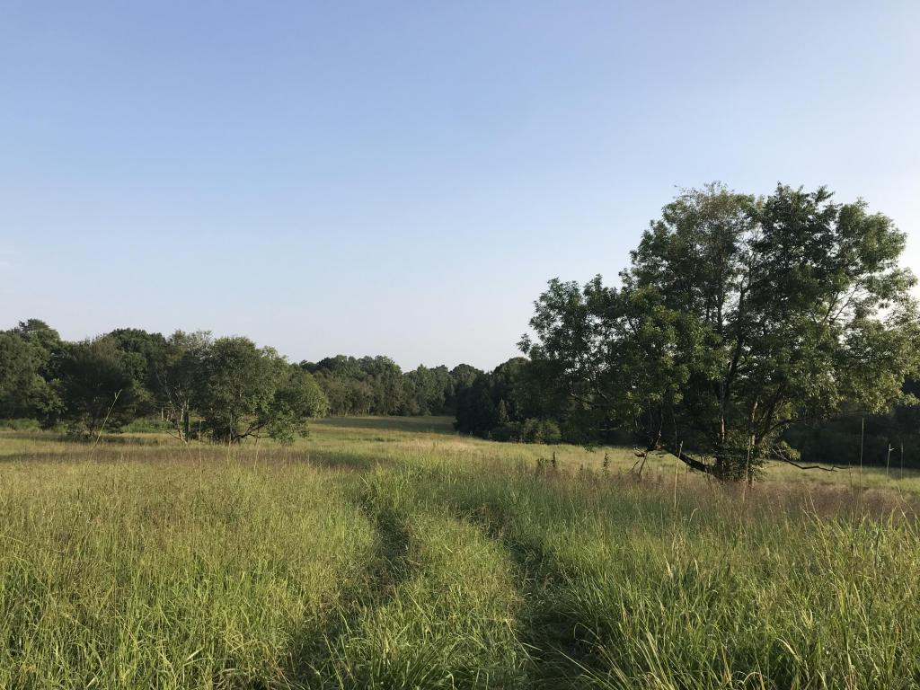 0 Gordon Pond Rd, Lafayette, GA 30728