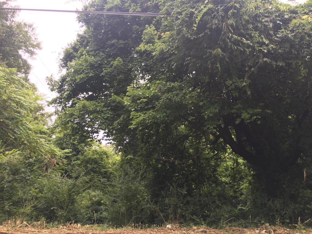 1020 Line St, Chattanooga, TN 37404