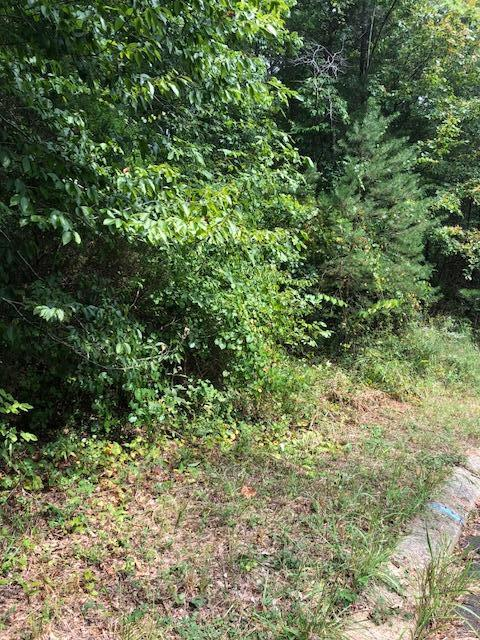 119 Hidden Hollow Cir, Dunlap, TN 37327