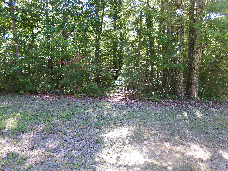 18 Hawks Bluff Rd, Spencer, TN 38585