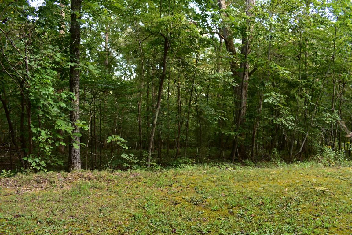 Lot176&177 Lakeview Dr 176 & 177, Spring City, TN 37381
