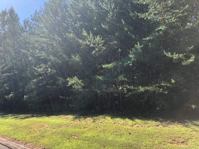 91 Big Cedar Dr, Dunlap, TN 37327