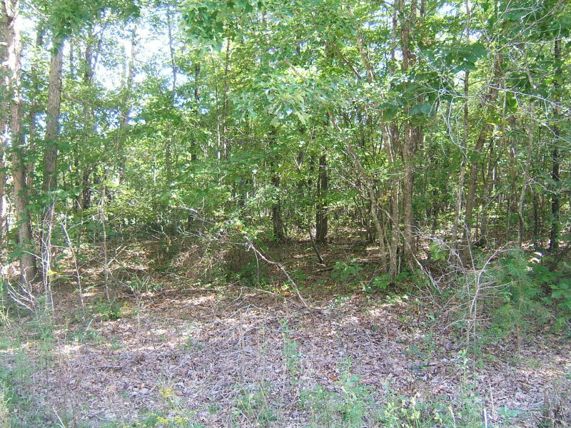 13 Black Mountain Rd E., Dunlap, TN 37327