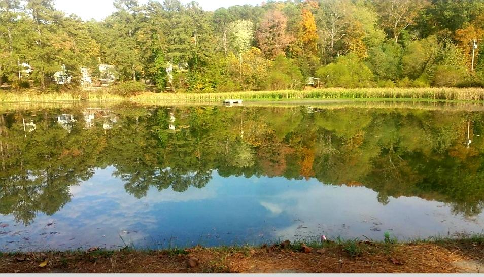 0 Indian Springs Pond And Site, Ringgold, GA 30736