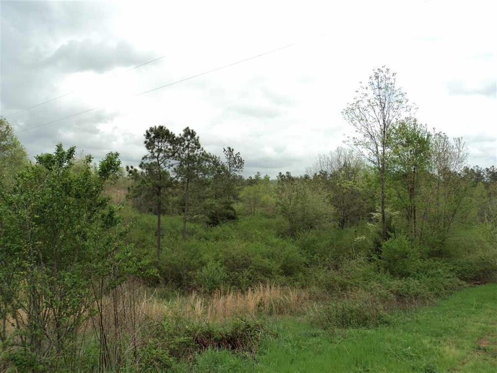 Lot 9 County Road 118 Rd Lot 9, Riceville, TN 37370