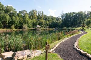 418 Brow Wood Ln, Lookout Mountain, GA 30750