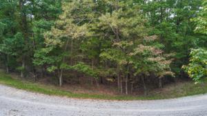 00 W Bluff Rd H26, Cloudland, GA 30731