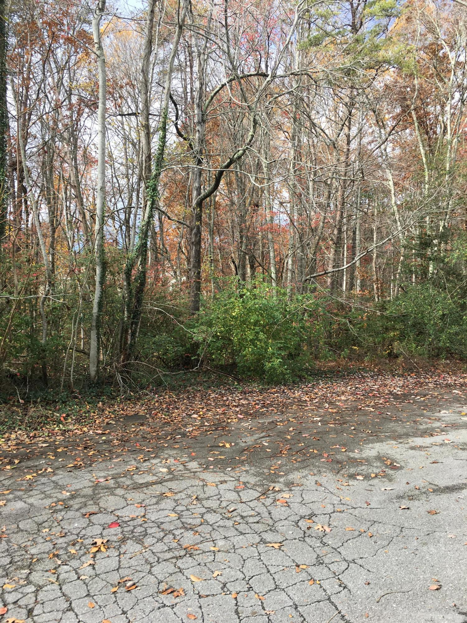 5827 Rocky Branch Rd, Signal Mountain, TN 37377