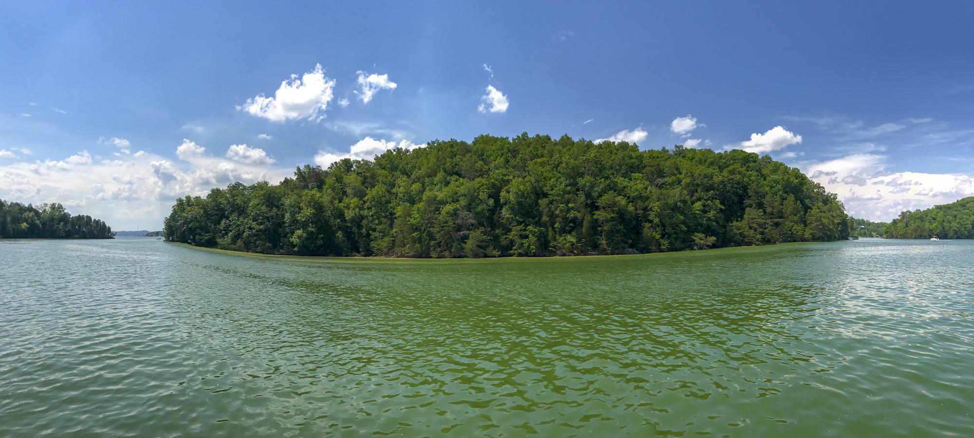 0 Douglas Lake, Dandridge, TN 37725