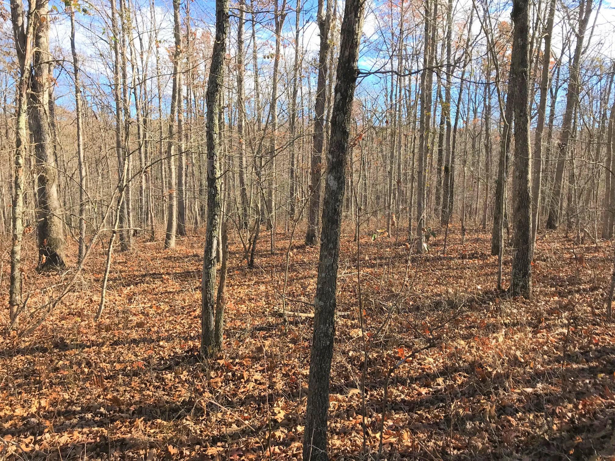 12 Poplar Creek Rd 12, Dunlap, TN 37327