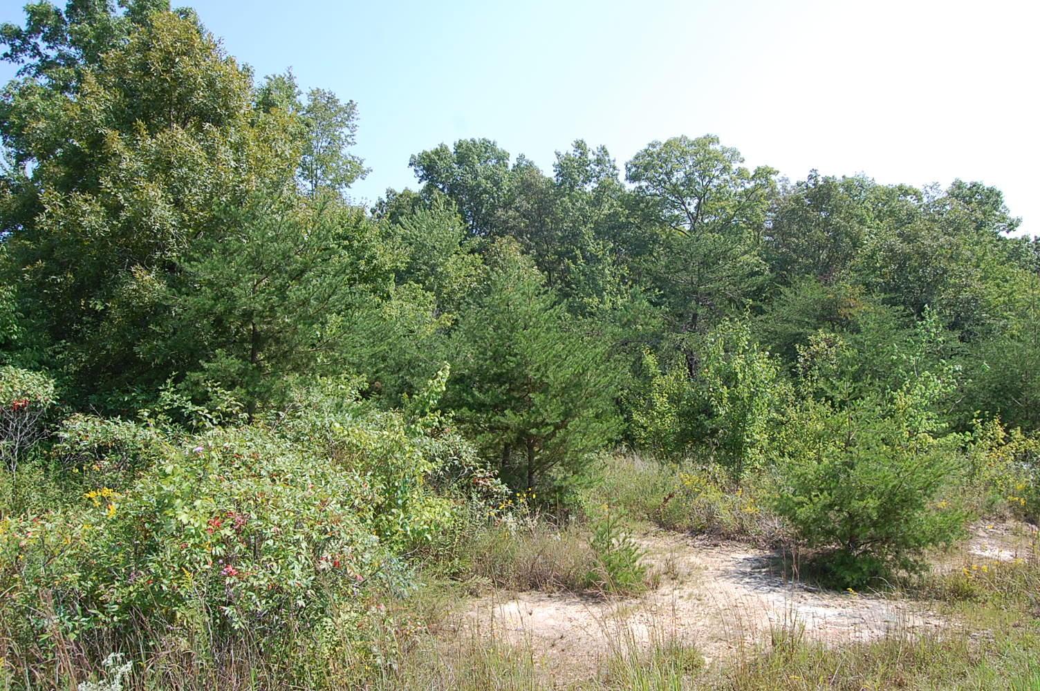16 Green Pond Rd, Dunlap, TN 37327