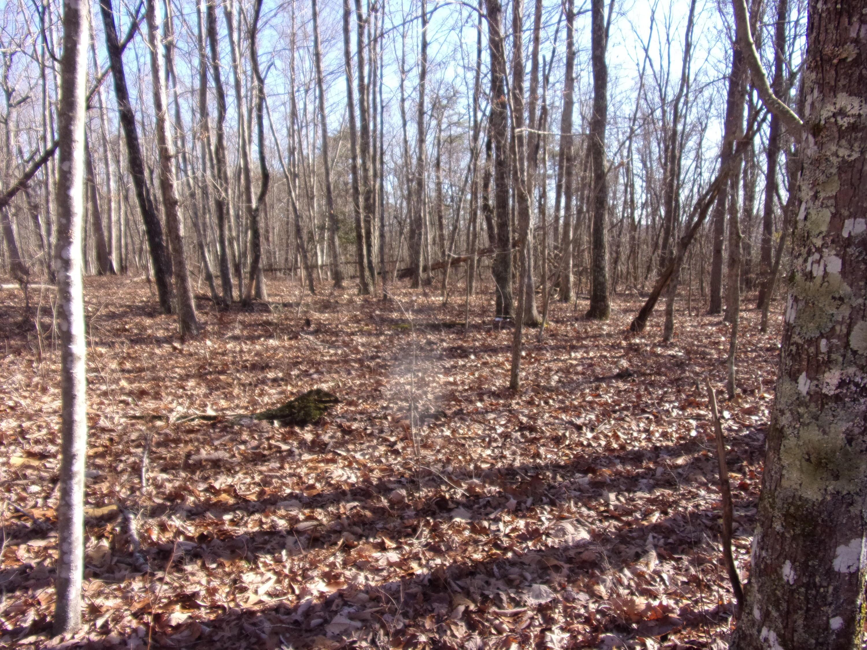 0 Rocky Creek Dr 18, Crossville, TN 38572