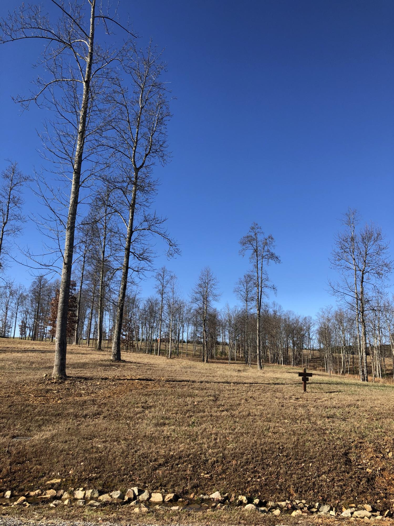 0 River Bluffs Dr 113, Jasper, TN 37347