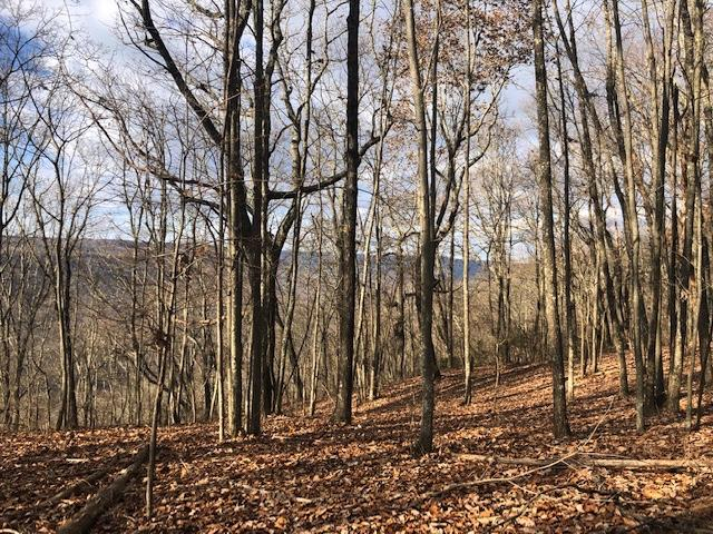 0 Bolton Point Rd 5, South Pittsburg, TN 37380