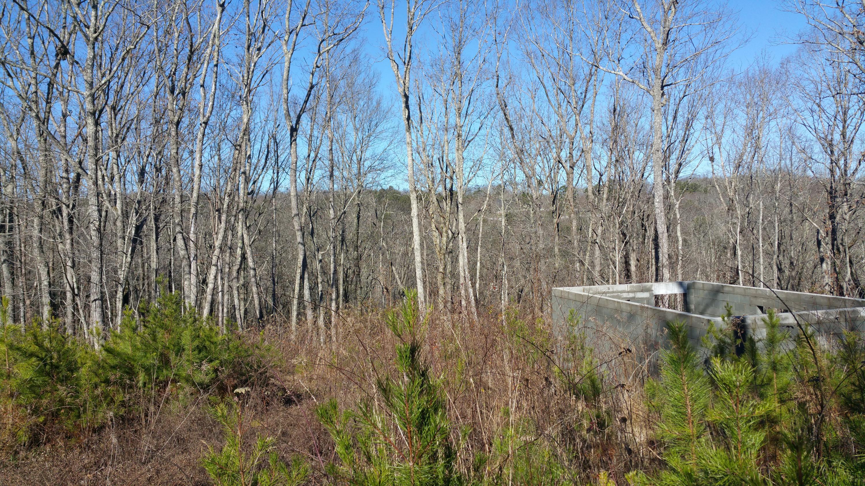 222 Galecki Drive Dr, Signal Mountain, TN 37377