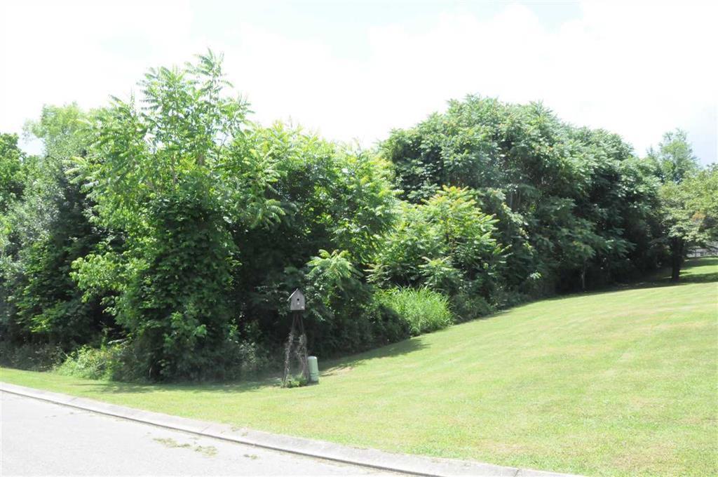 Lot 8 Millstone Dr 8, Dayton, TN 37321