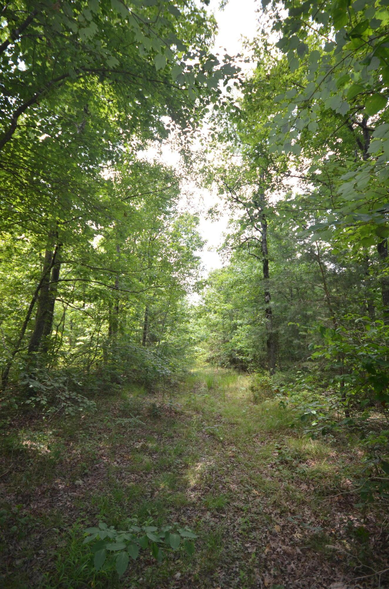 0 Hunters Trail Way 102, Altamont, TN 37301