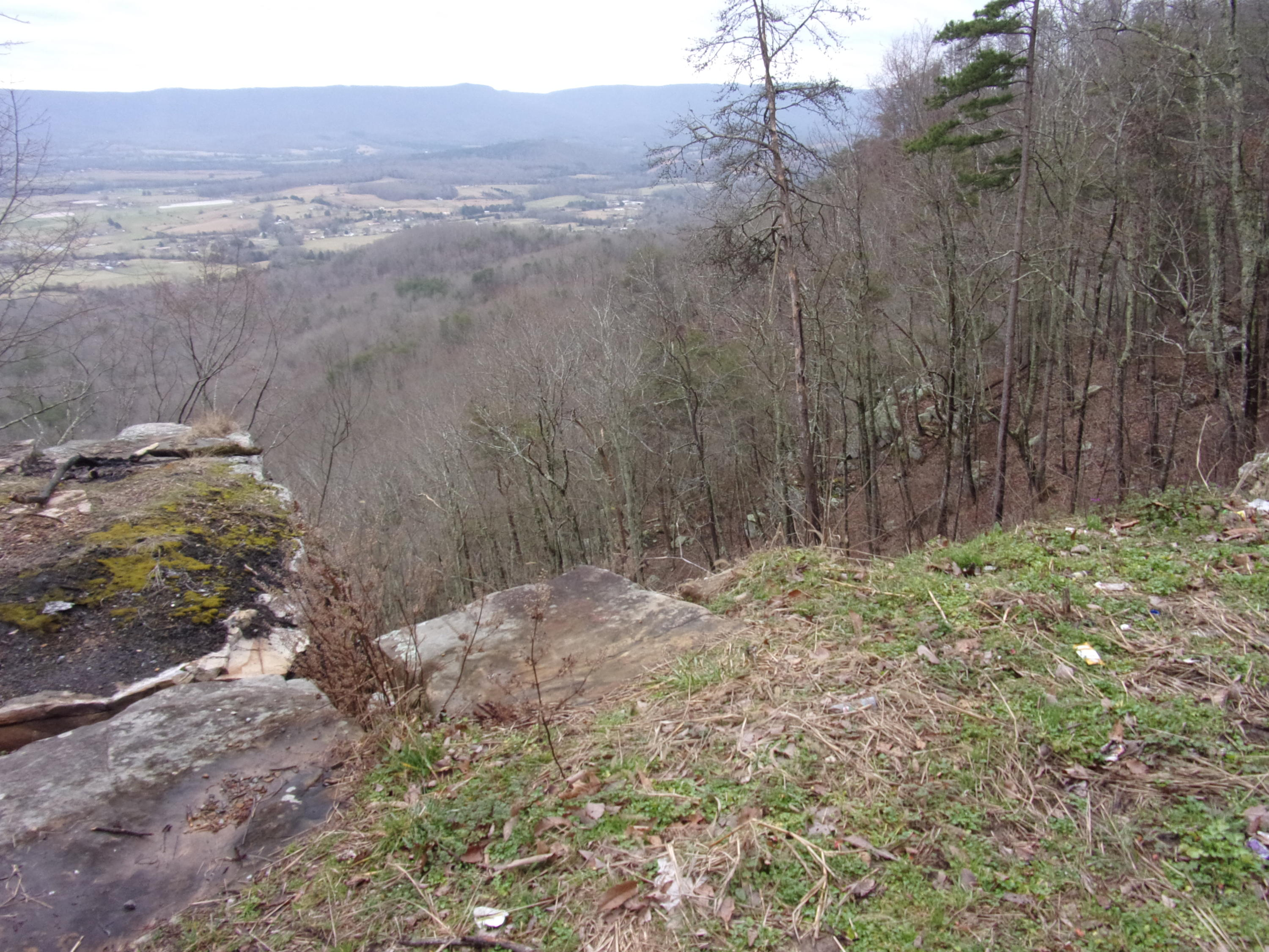 0 Bench Rd, Pikeville, TN 37367