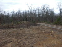 Tract 3 &4 Toestring Valley Rd Off Rd 3 & 4, Spring City, TN 37381