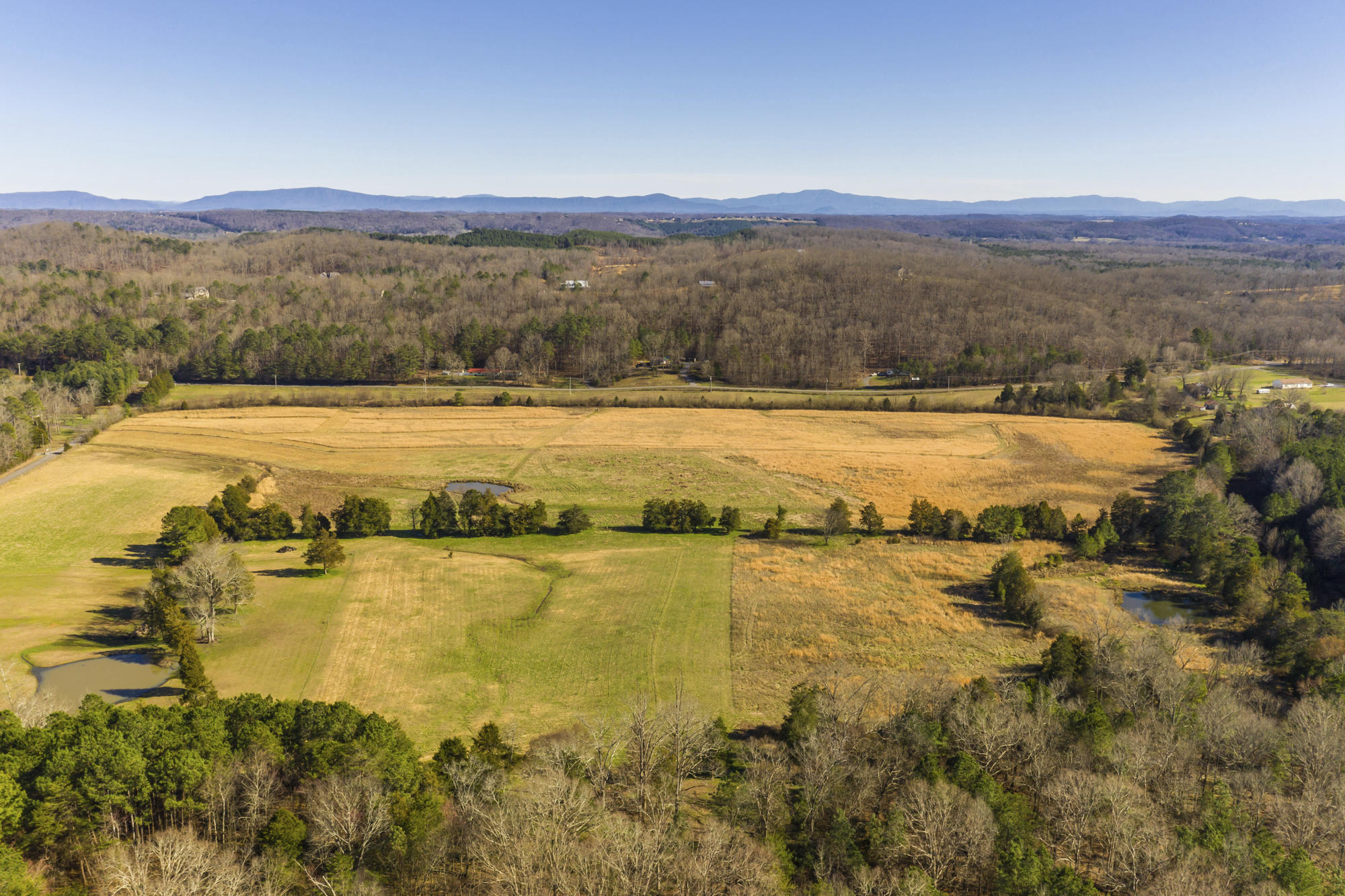 Lot # 4 Nw No Pone Rd Lot # 4, Georgetown, TN 37336