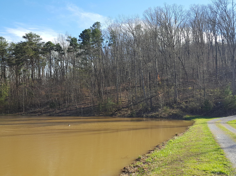 0 Lake Dr, Trenton, GA 30752