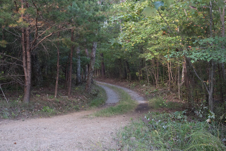11 Highlands Forest Dr 11, Cloudland, GA 30731