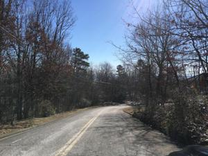 0 Fort Trace Dr 25, Lookout Mountain, GA 30750