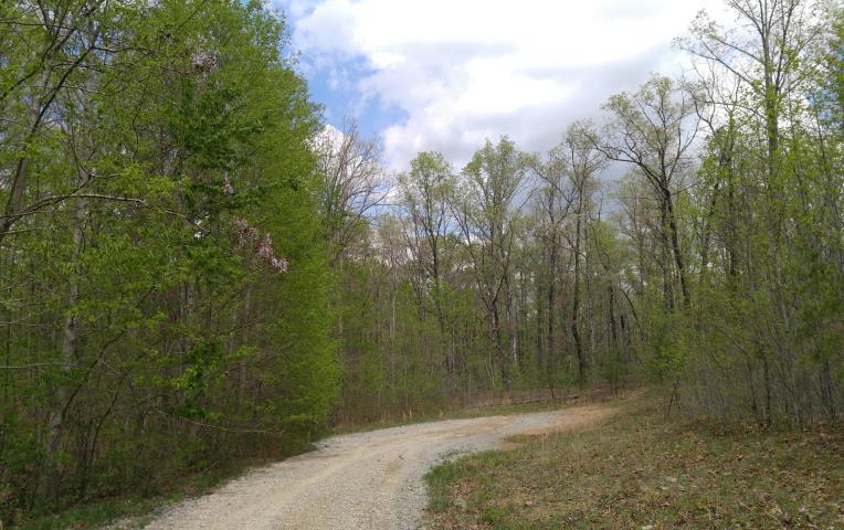 10 Green Forest Rd, Dunlap, TN 37327