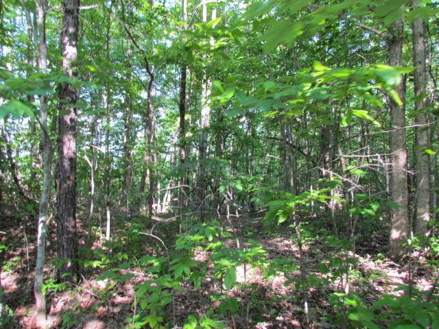 13 Tranquil Acres, Sequatchie, TN 37374