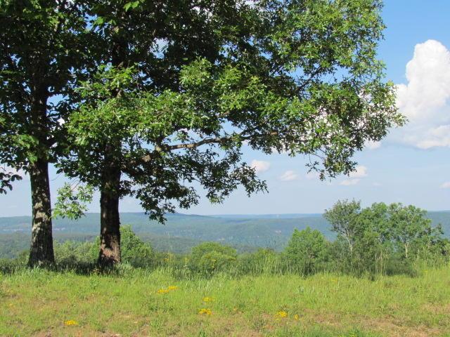 8 Tranquil Acres Rd, Sequatchie, TN 37374