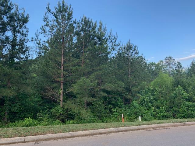 160 Mountain View Cir, Ocoee, TN 37361