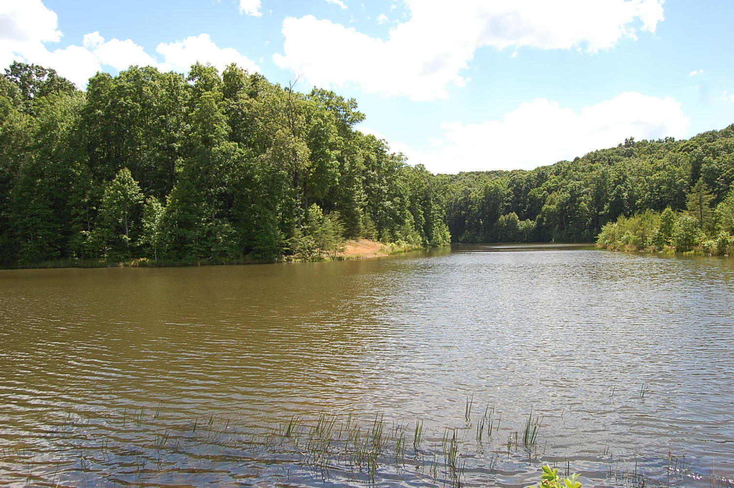 16 Sunbeam Lake Loop Rd, Dunlap, TN 37327