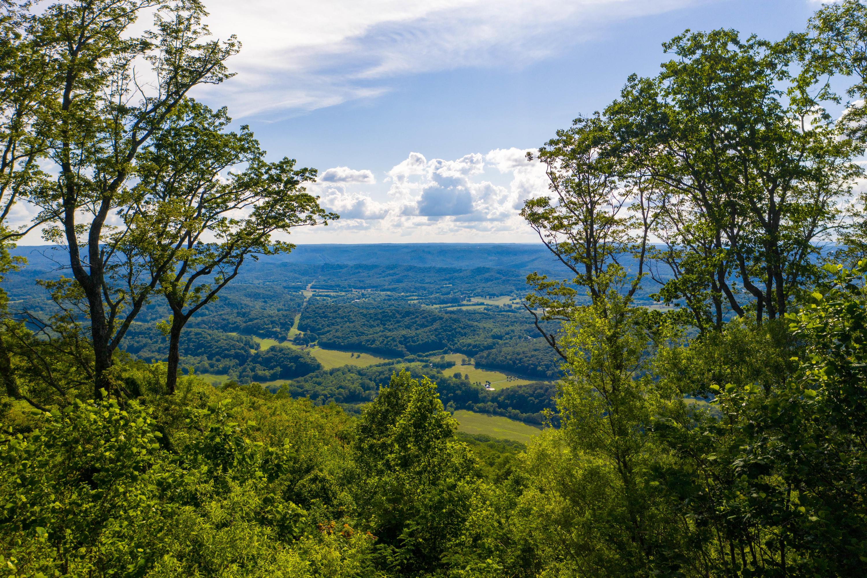 407 Brow Wood Ln, Lookout Mountain, GA 30750
