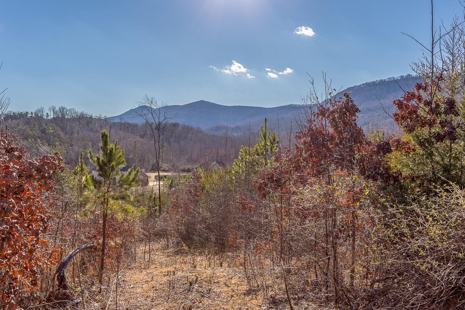 Lot 16 Turkey Run, Flintstone, GA 30725