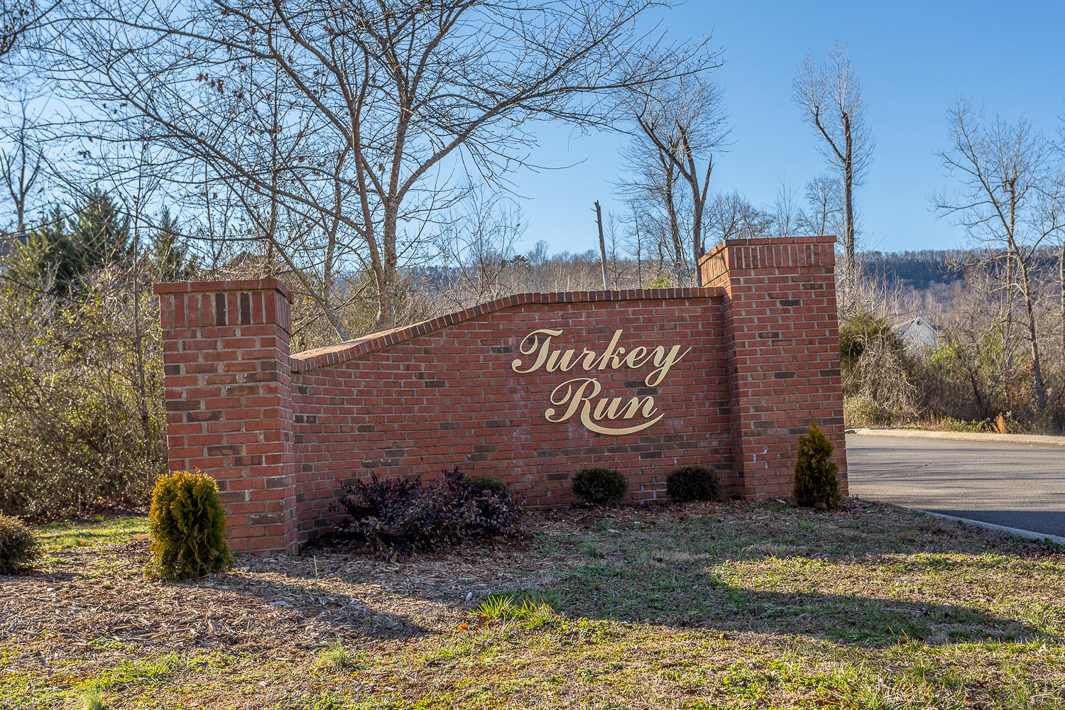 Lot 20 Turkey Run, Flintstone, GA 30725