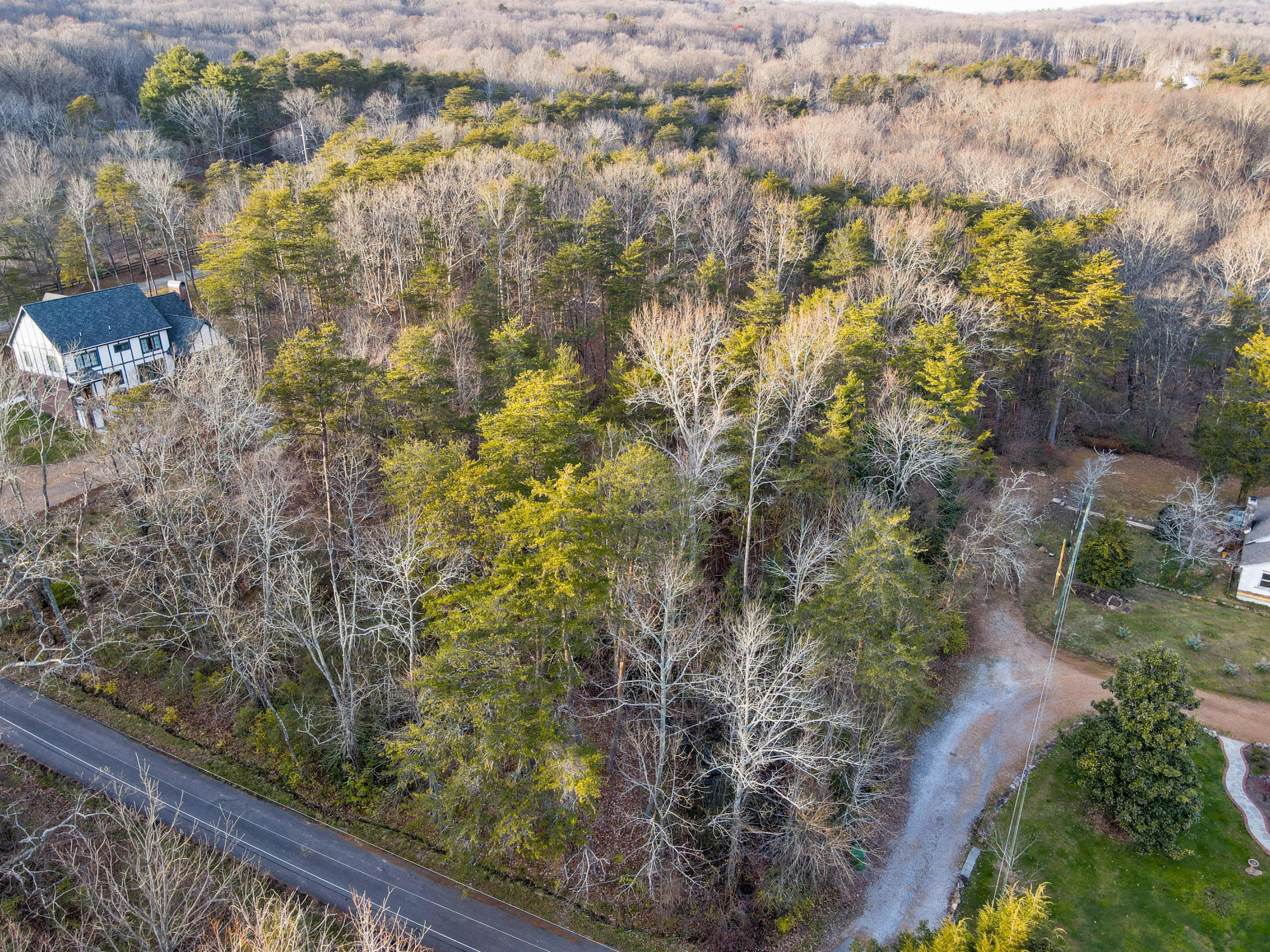 71 Mccallie Ln, Lookout Mountain, GA 30750