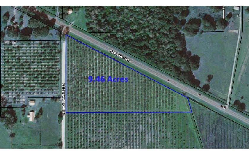 4045 Mineral Branch Rd, Zolfo Springs, FL 33890