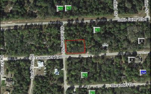 3362 Gossamer Ave, Lake Placid, FL 33852