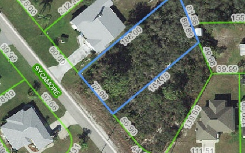 1529 Mulberry Ave, Lake Placid, FL 33852