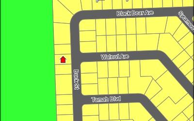 1528 Buck St, Lake Placid, FL 33852