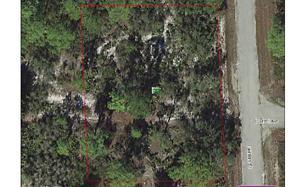 1062 Lorca St, Lake Placid, FL 33852