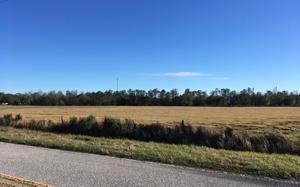 Us Hwy 17 S, Fort Meade, FL 33841