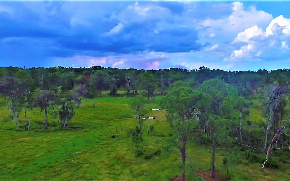 900 Plantation Dr, Sebring, FL 33876