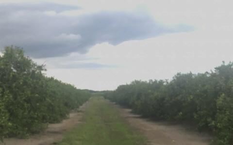 2794 Bessie Road, Wauchula, FL 33873